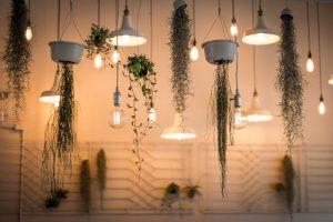 Zono Interieur: diseño de interiores